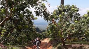 Mountain bike-Chiang Mai-Cross Country mountain biking in Doi Suthep National Park-5