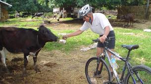 Mountain bike-Bangkok-Multi Day MTB tour in Khao Yai near Bangkok-2