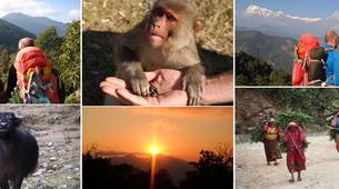 Stage de Survie-Kathmandu-Stage de Survie au Népal au départ de Katmandou-1
