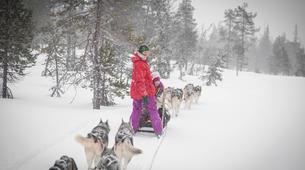 Dog sledding-Rovaniemi-Dog Sledding near Rovaniemi-4
