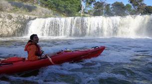 Sea Kayaking-Paihia-Kayaking and Walking Tour of Haruru Falls, Bay of Islands-3