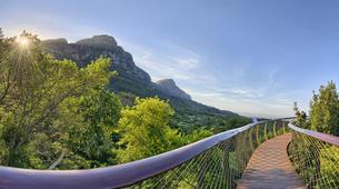 Hiking / Trekking-Cape Town-Hike to Kirstenbosch Gardens in Cape Town-3