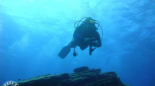 Scuba Diving-São Miguel-Discover Scuba Diving from Vila Franca do Campo, Sao Miguel Island-2