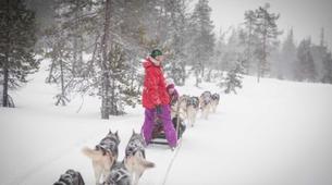 Dog sledding-Rovaniemi-Dog Sledding near Rovaniemi-6