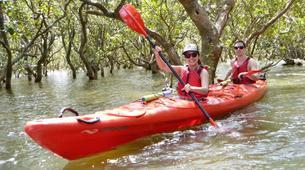 Sea Kayaking-Paihia-Classic Kayaking in Haruru Falls, Bay of Islands-1