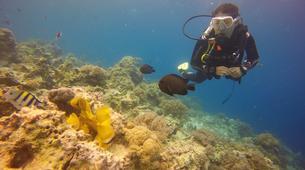 Scuba Diving-Zanzibar-PADI Open Water Course Nungwi, Zanzibar-1