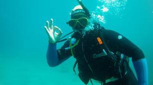 Scuba Diving-São Miguel-Scuba Diving trip to Manta Blue in Sao Miguel-5