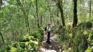 Hiking / Trekking-Guimaraes-Hiking tour in Serra da Cabreira near Guimaraes-1