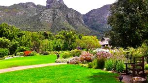 Hiking / Trekking-Cape Town-Hike to Kirstenbosch Gardens in Cape Town-6