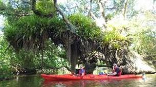 Sea Kayaking-Paihia-Classic Kayaking in Haruru Falls, Bay of Islands-5