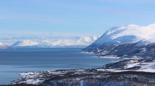 Raquette à Neige-Tromsø-Snowshoeing Adventure near Tromsø-3