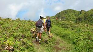 Randonnée / Trekking-Montagne Pelée-Randonnée à la Montagne Pelée en Martinique-4