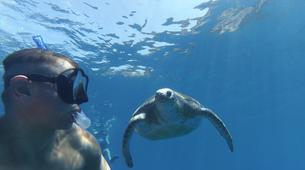 Sea Kayaking-Los Cristianos, Tenerife-Kayaking and snorkeling with turtles in Los Cristianos, Tenerife-6