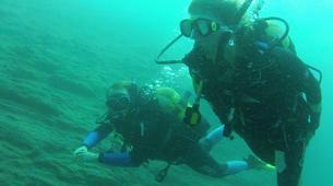 Scuba Diving-São Miguel-Scuba Diving trip to Manta Blue in Sao Miguel-3
