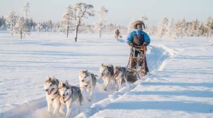 Dog sledding-Rovaniemi-Mushing Masterclass near Rovaniemi-1
