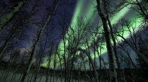 Snowshoeing-Tromsø-Snowshoeing with Northern Lights and Overnight at Polar Cabin, near Tromsø-1