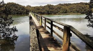 Sea Kayaking-Paihia-Kayaking and Walking Tour of Haruru Falls, Bay of Islands-6