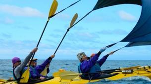Sea Kayaking-Abel Tasman National Park-Day Kayaking Tour in Torrent Bay-3