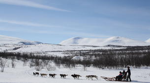 Dog sledding-Abisko-Dog Sledding Adventure in the Arctic Circle-6