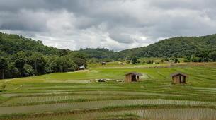 Hiking / Trekking-Chiang Mai-Hiking in Doi Inthanon National Park-2