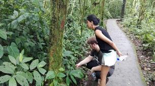 Hiking / Trekking-Arenal Volcano National Park-Hiking in Arenal Volcano National Park-1