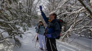 Snowshoeing-Vosges-Snowshoe hike in the Calvaire pass, Vosges-5