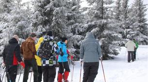 Snowshoeing-Vosges-Snowshoe hike in the Calvaire pass, Vosges-3