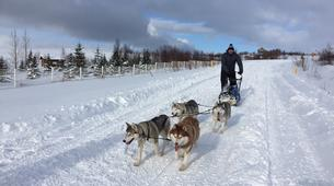 Dog sledding-Akureyri-Dog sledding excursion in Akureyri-2