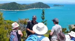 Sea Kayaking-Abel Tasman National Park-Cruise and Kayaking from Medlands Beach to Kaiteriteri-3
