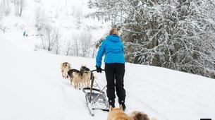 Dog sledding-Avoriaz, Portes du Soleil-Dog Sledding Taster Lesson in Avoriaz, Portes du Soleil-2