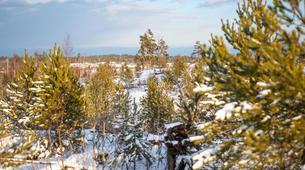 Raquette à Neige-Stockholm-Snowshoe hike in Stockholm-2