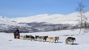 Dog sledding-Abisko-Dog Sledding Adventure in the Arctic Circle-2