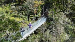Sea Kayaking-Abel Tasman National Park-Cruise and Kayaking from Medlands Beach to Kaiteriteri-4