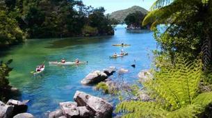 Sea Kayaking-Abel Tasman National Park-Cruise and Kayaking from Medlands Beach to Kaiteriteri-2