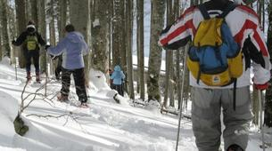 Snowshoeing-Vosges-Snowshoe hike in the Calvaire pass, Vosges-6