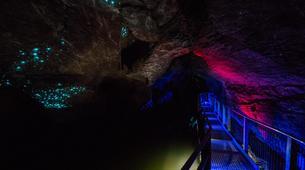 Caving-Waitomo-Glowworm Cave tour in the Waitomo Caves-2