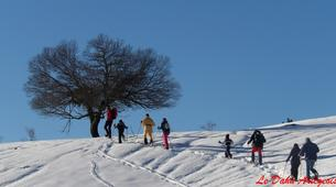 Raquette à Neige-Ariege-Randonnée en Raquettes près de Foix, Ariège-1