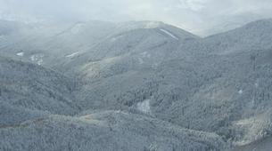 Snowshoeing-Vosges-Snowshoe hike in the Calvaire pass, Vosges-1