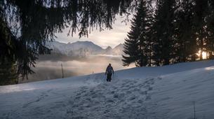 Snowshoeing-Morzine, Portes du Soleil-Snowshoeing excursion in Morzine, Portes du Soleil-3