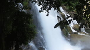 Hiking / Trekking-Chiang Mai-Hiking in Doi Inthanon National Park-3