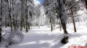 Raquette à Neige-Ariege-Randonnée en Raquettes près de Foix, Ariège-5