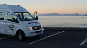 Glacier hiking-Taupo-Tongariro Crossing equipment rental and shuttle-5