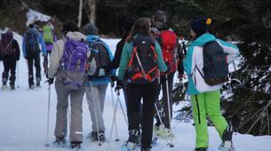 Snowshoeing-Lourdes-Snowshoeing excursion in the Hautacam crests near Lourdes-6