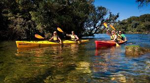 Kayaking-Rotorua-Glow Worm Tour on Lake Rotoiti-1