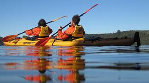 Kayaking-Rotorua-Glow Worm Tour on Lake Rotoiti-6