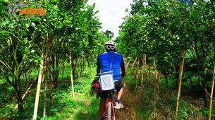 Mountain bike-Bali-MTB Tour of Mt. Batur in Bali-5