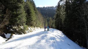 Raquette à Neige-Gavarnie-Randonnée Raquettes au Cirque de Gavarnie, Pyrénées-1