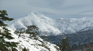 Raquette à Neige-Morosaglia-Randonnée Guidée en Raquettes dans la Vallée du Niolo, Haute-Corse-2