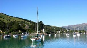 Helicopter tours-Christchurch-Scenic Helicopter Tour of Akaroa-5