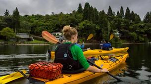 Kayaking-Rotorua-Glow Worm Tour on Lake Rotoiti-5